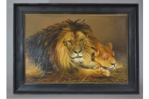 Signed oil on canvas. Lion and lioness